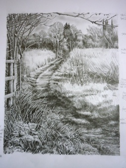 Landscape: Hungerford marsh towards the town: graphite